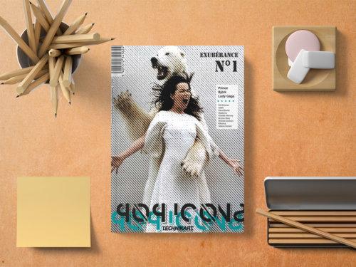 couverture pop icons